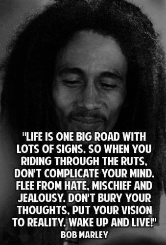 life is one big road