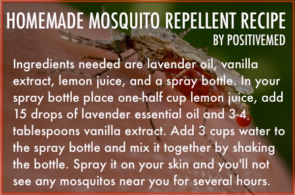 mosquito repellent recipe