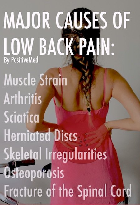 back muscles and low back pain