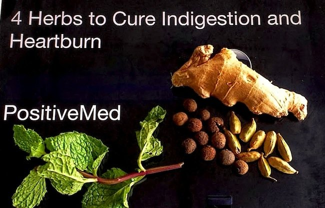 herbs to cure indigestion and heartburn