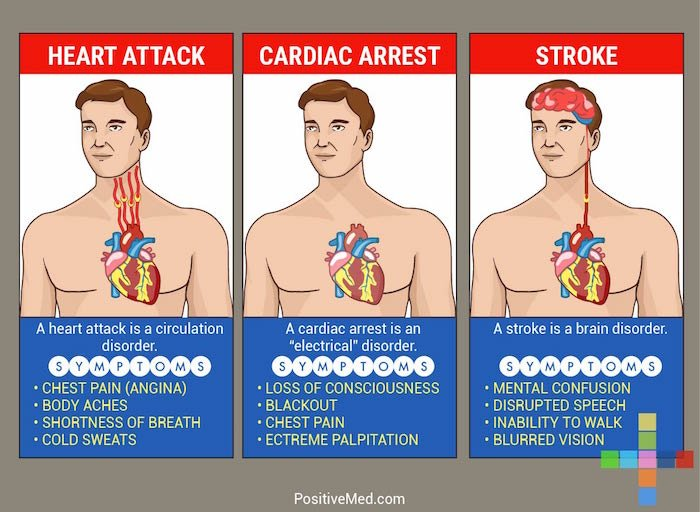 THIS May Save Your Life: The Difference Between A Heart Attack, Stroke And Cardiac Arrest