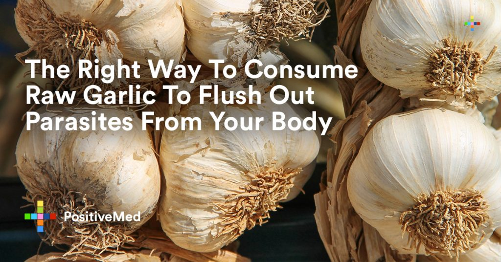 The Right Way To Consume Raw Garlic To Flush Out Parasites From Your Body.