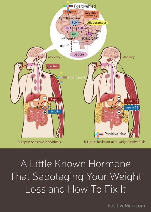A Little Known Hormone That Sabotaging Your Weight Loss and How To Fix It