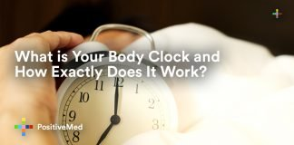 What is Your Body Clock and How Exactly Does It Work.