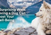 5 Surprising Ways Having a Dog Can Boost Your Well-Being