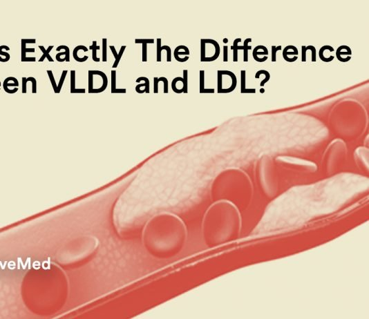 What's Exactly The Difference Between VLDV and LDL