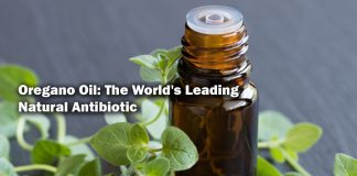 Oregano Oil The World's Leading Natural Antibiotic.