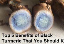 24Top-5-Benefits-of-Black-Turmeric-That-You-Should-Know.jpg