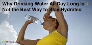 Why Drinking Water All Day Long Is Not the Best Way to Stay Hydrated