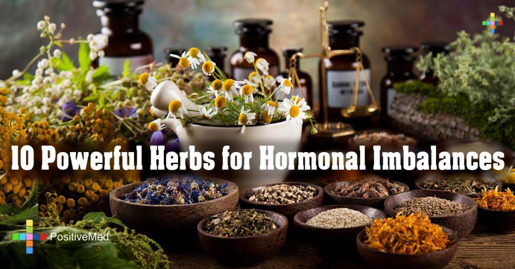 10 Powerful Herbs for Hormonal Imbalances
