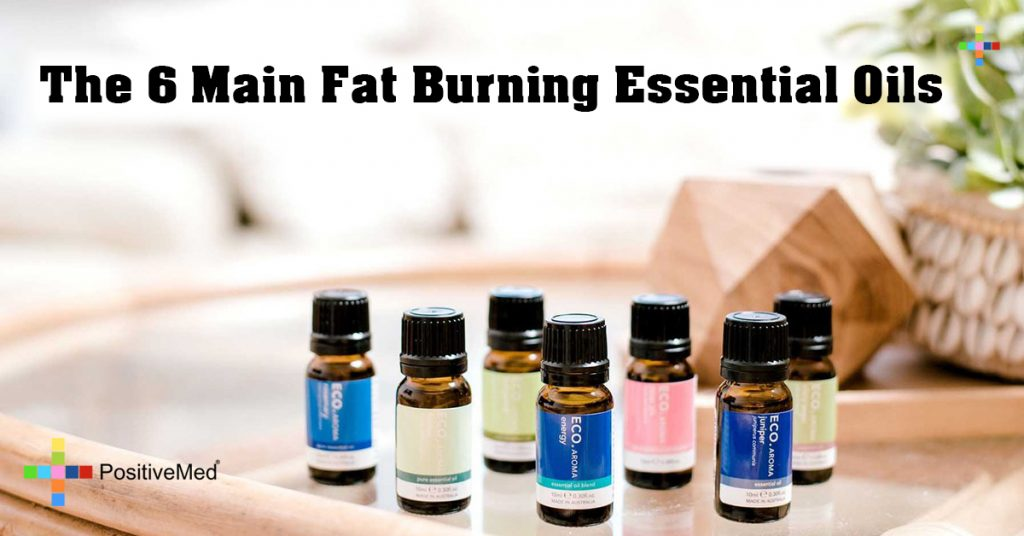 The 6 Main Fat Burning Essential Oils