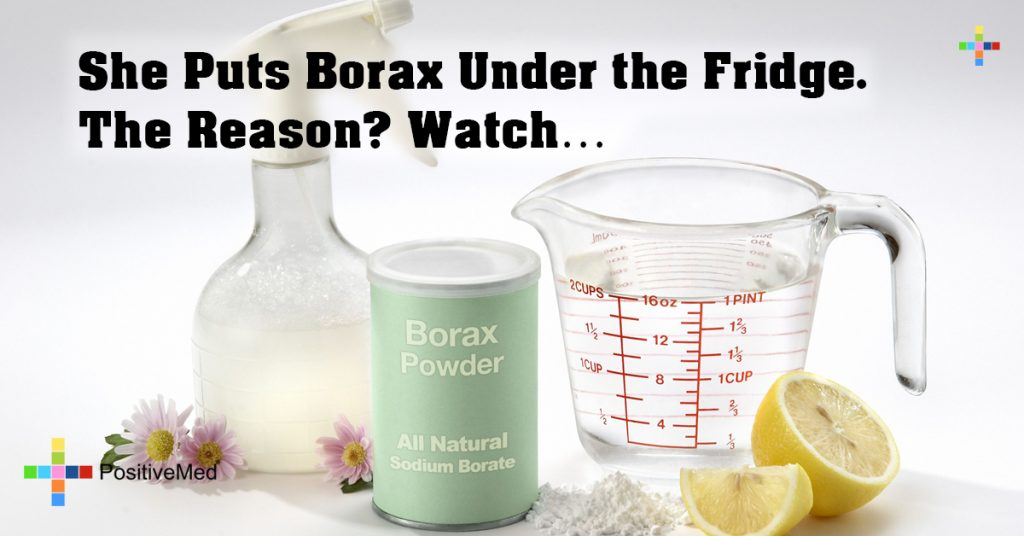 She Puts Borax Under the Fridge. The Reason? Watch...