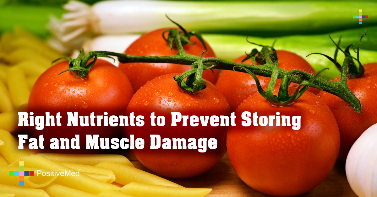Right Nutrients to Prevent Storing Fat and Muscle Damage