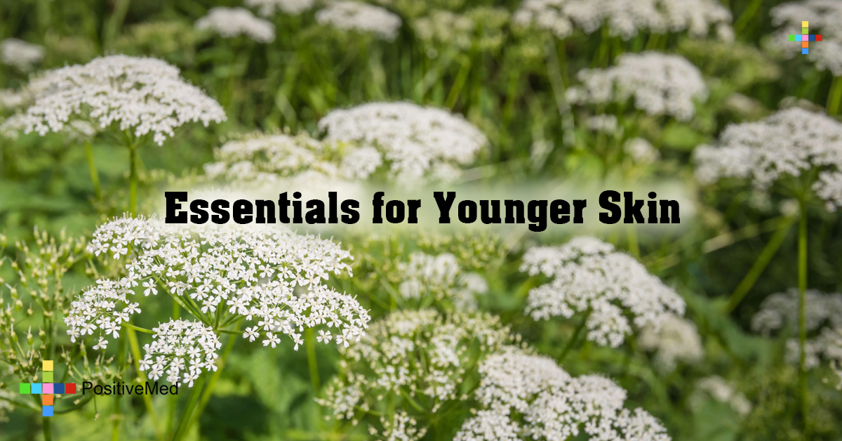 Essentials for Younger Skin